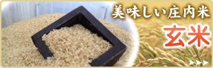栄養豊富な庄内米! 玄米 通販ページ